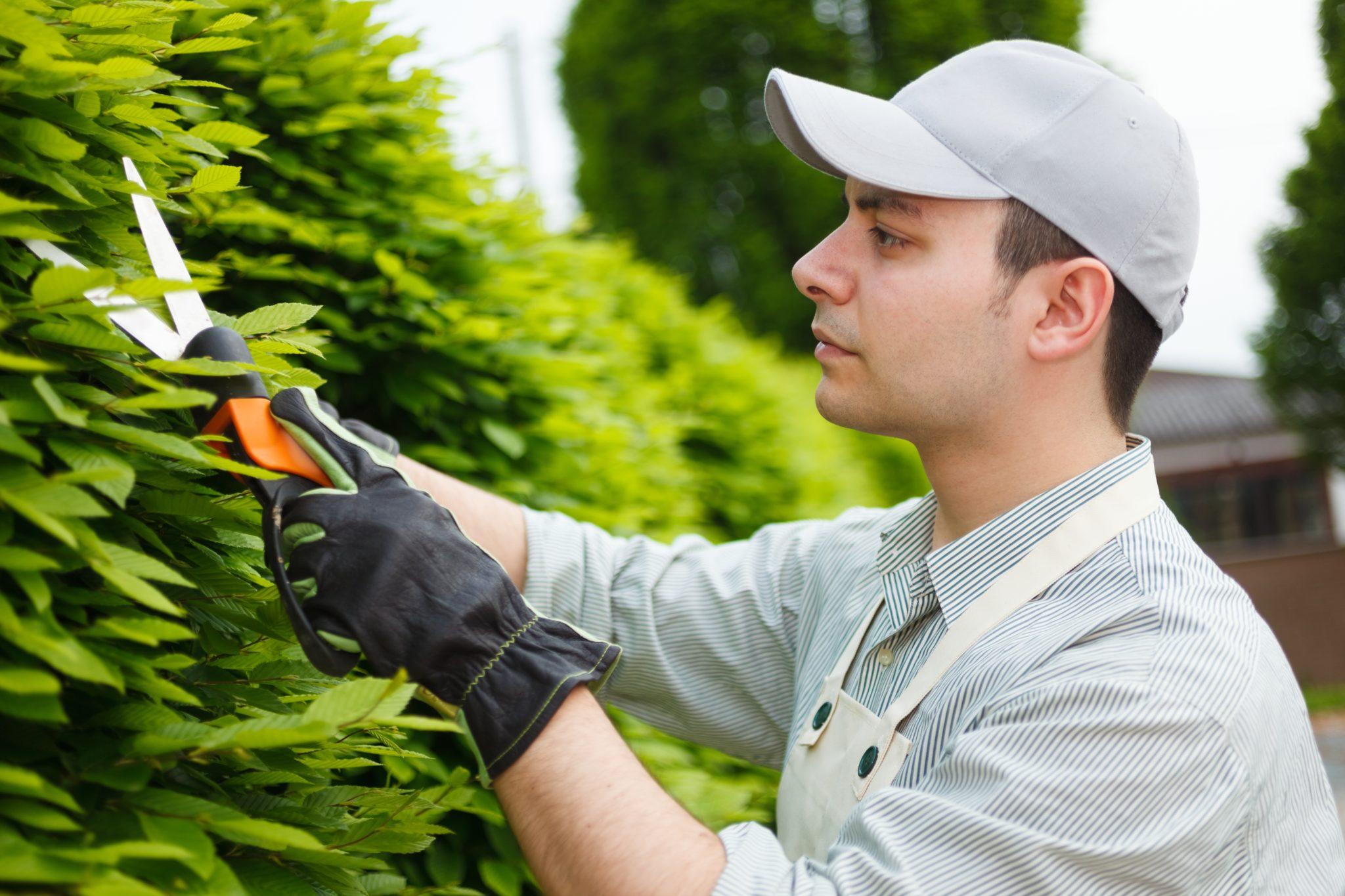 Addetto all'opera nella manutenzione del verde.